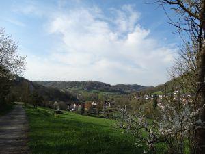 Buchenbach im April